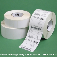 Zebra 3004645 Z-Perform 1000T Labels (100x100)